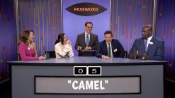 'Tonight': Mandy Moore, Noah Cyrus, Shaq Play 'Password'