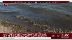 Sewage Washes Up on West Haven Beaches