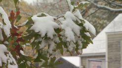 First Snow For Torrington