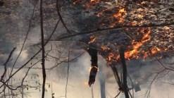 Multiple Departments Battle Bristol Brush Fire
