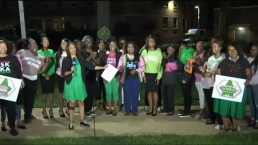 Alpha Kappa Alpha Raising Money for HBCUs