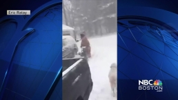 Viewer Video: NH Mom Dresses as T-Rex During Storm