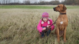These 9 Breeds Make Excellent Guard Dogs
