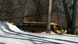 Driver Dead After Tree Falls on School Bus in Avon