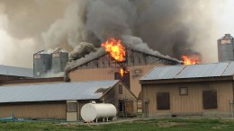 Overheated Motor Caused Fire That Killed Chickens