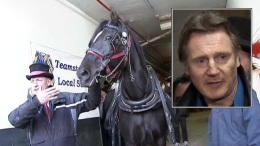 Carriage Horse Foes Picket Liam Neeson's Home
