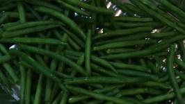 General Mills Recalls 60,000 Bags of Green Beans