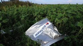 Relatives Told Russian-Made Missile Downed MH17