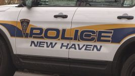 Teens Attack 79-Year-Old Yale Professor in New Haven