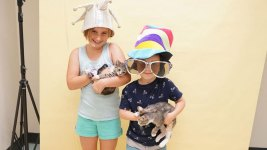 40K Pets Find Homes Through Clear the Shelters