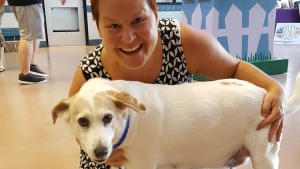 Senior Dog Gets a Second Chance Thanks to Clear the Shelters