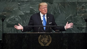 Other Nations Adjust to 'America First' Policy: Analysis