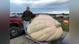 New Hampshire Pumpkin Deemed Heaviest in North America
