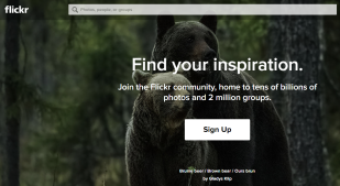 Flickr Starts Deleting Thousands of User Photos