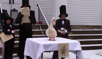 Eastford Duck Makes Weather and Super Bowl Prediction