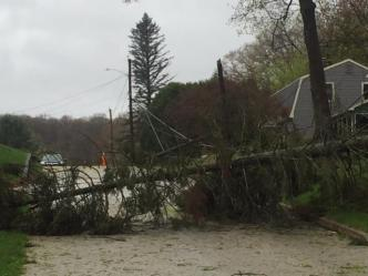 Unusual Wind Storm Clobbers Vermont, New York