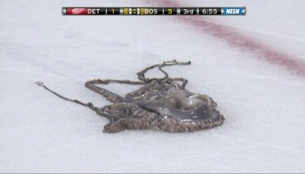 Man Throws Octopus Onto Ice Rink During Bruins Game