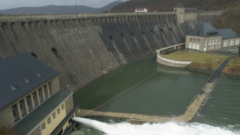 Fish-Friendly Dams? Scientists Race to Reduce Turbine Trauma