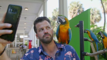 Johnny Goes Wild on Jungle Island
