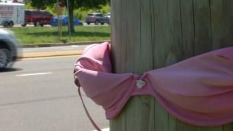 Delaware's Secret: Mystery Bras Spotted on Utility Poles