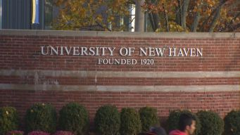 University of New Haven Testing If Unearthed Bones Belong to Feared Pirate