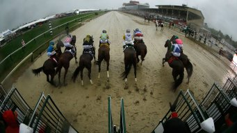 Preakness Could Move to Sunday in 2016: Officials