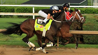 Kentucky Derby: 5 Horses to Watch