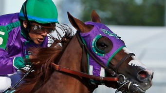 """""""He's Ready"""": Chrome Sets Up for Triple Crown"""