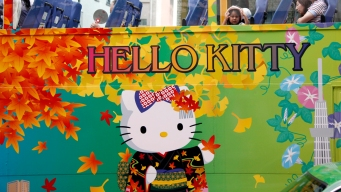 Hello Kitty Owner Says Fan Site Security Leak Fixed