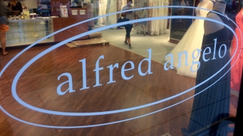 Alfred Angelo Attorney Says Dresses Stuck in California Port