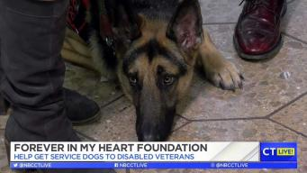 CT LIVE!: Forever in My Heart Foundation