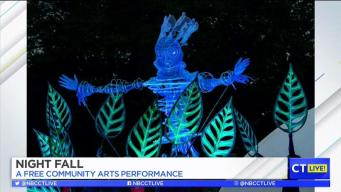 CT LIVE!: Night Fall Community Arts Performance