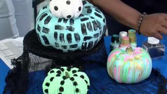 CT LIVE!: No Carve Pumpkin Crafts