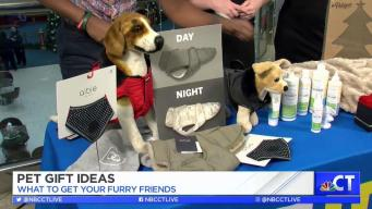 CT LIVE!: Pet Gift Ideas