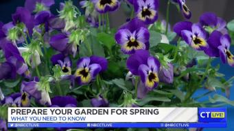 CT LIVE!: Prepare Your Garden for Spring