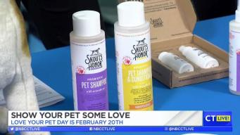 CT LIVE!: Show Your Pet Some Love