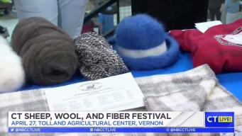 CT LIVE!: CT Sheep, Wool, and Fiber Festival
