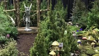 CT Flower and Garden Show Kicks Off