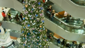 Consumer Protection Warns Businesses of Holiday Scammers