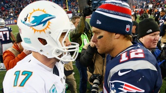 Fish Squished: Brady Puts Dolphins in Their Place