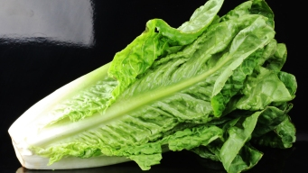 'Do Not Eat Any Romaine Lettuce,' CDC Says