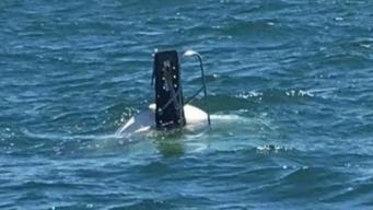 Good Samaritan Rescues 4 People From Capsized Boat Near Niantic Bay