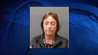 Woman Accused of Embezzling $500K From Plainfield Company