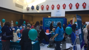 Hundreds Turn Out for 2016 Health and Wellness Festival