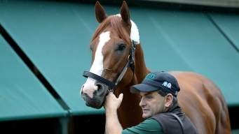 Half the Horses in Preakness Field Get 1st Shot at Justify