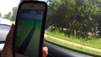 Pokemon Go Ride Services Combat Distracted Driving