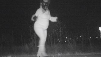 Werewolf, Gorilla And Santa All Caught on Trail Camera