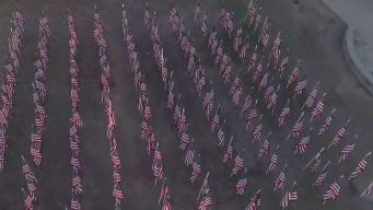 Norwich Free Academy Displays Flags to Honor Veterans