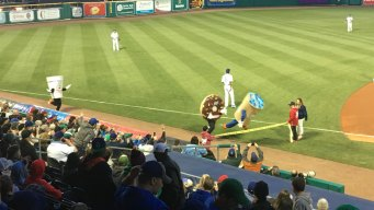 Yard Goats Play Ball in Dunkin' Donuts Park