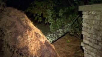Rhode Island Residents Assess Damage After Rare October Tornado